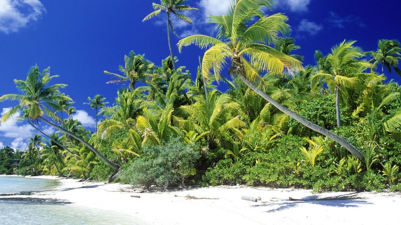 palm beach solomon islands normal