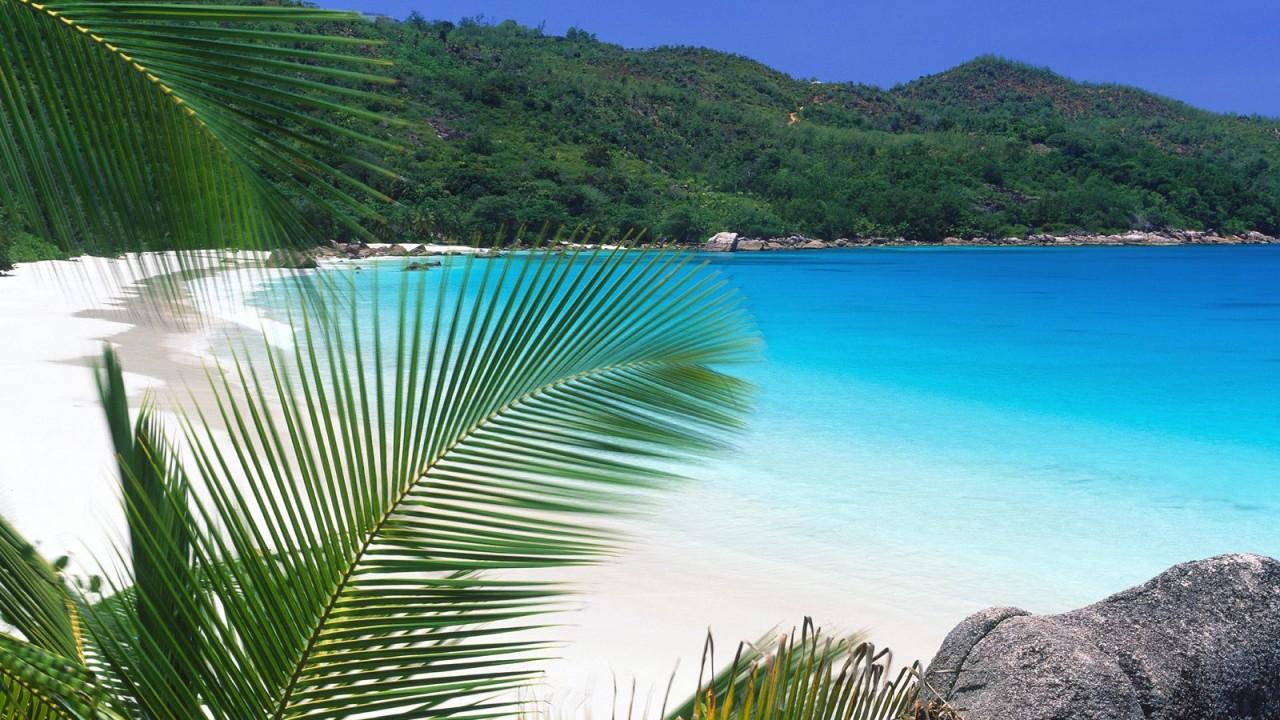 tropical retreat beach normal