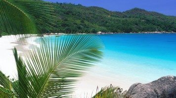 tropical-retreat-beach-normal