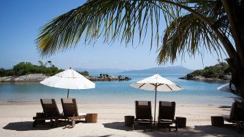 hd-wallpaper-beach-palms