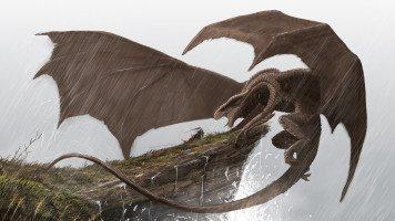 Knight-versus-Dragon