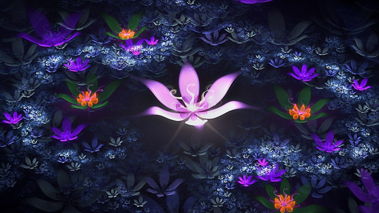 creative lotus flowes wallpapper