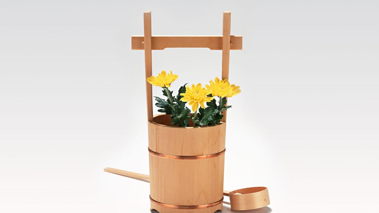 interesting flowerpot