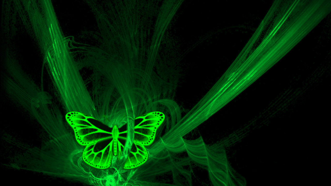 phosphorescent green butterfly