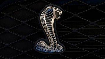 spectacled-snake