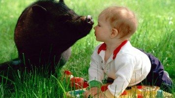 hd-wallpaper-animal-lovers-baby-and-cute-black