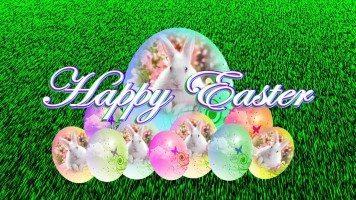 easter-bunny-eggs-hd-wallpaper