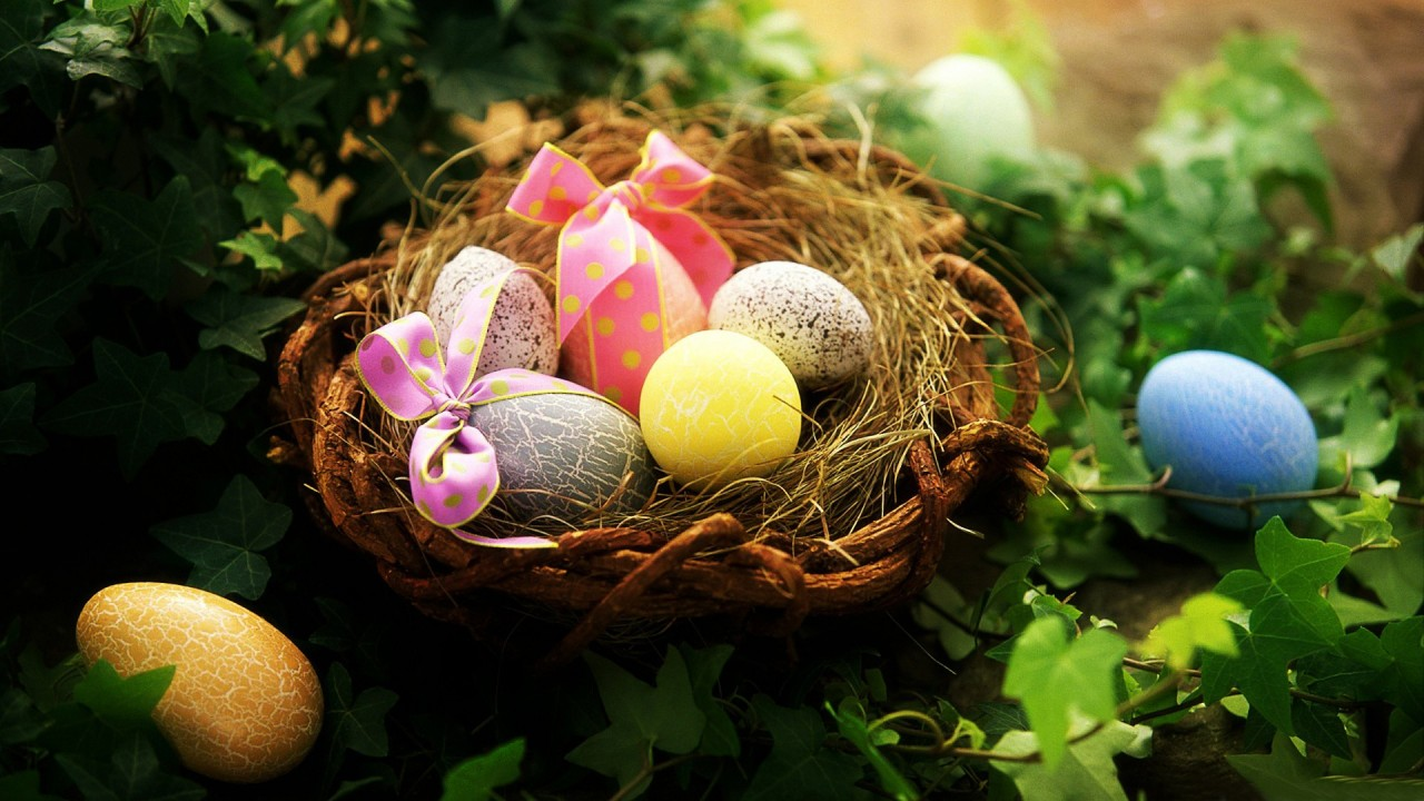 easter greetings eggs hd wallpaper