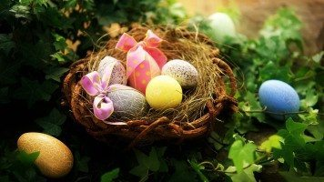easter-greetings-eggs-hd-wallpaper