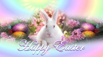 hd-wallpaper-happy-easter-bunny-