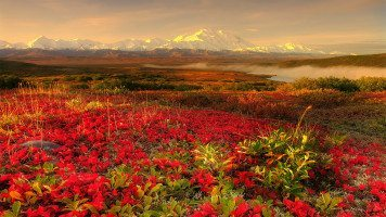 alaska-beautiful-hd-wallpaper