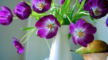 purple-flowers-in-vase