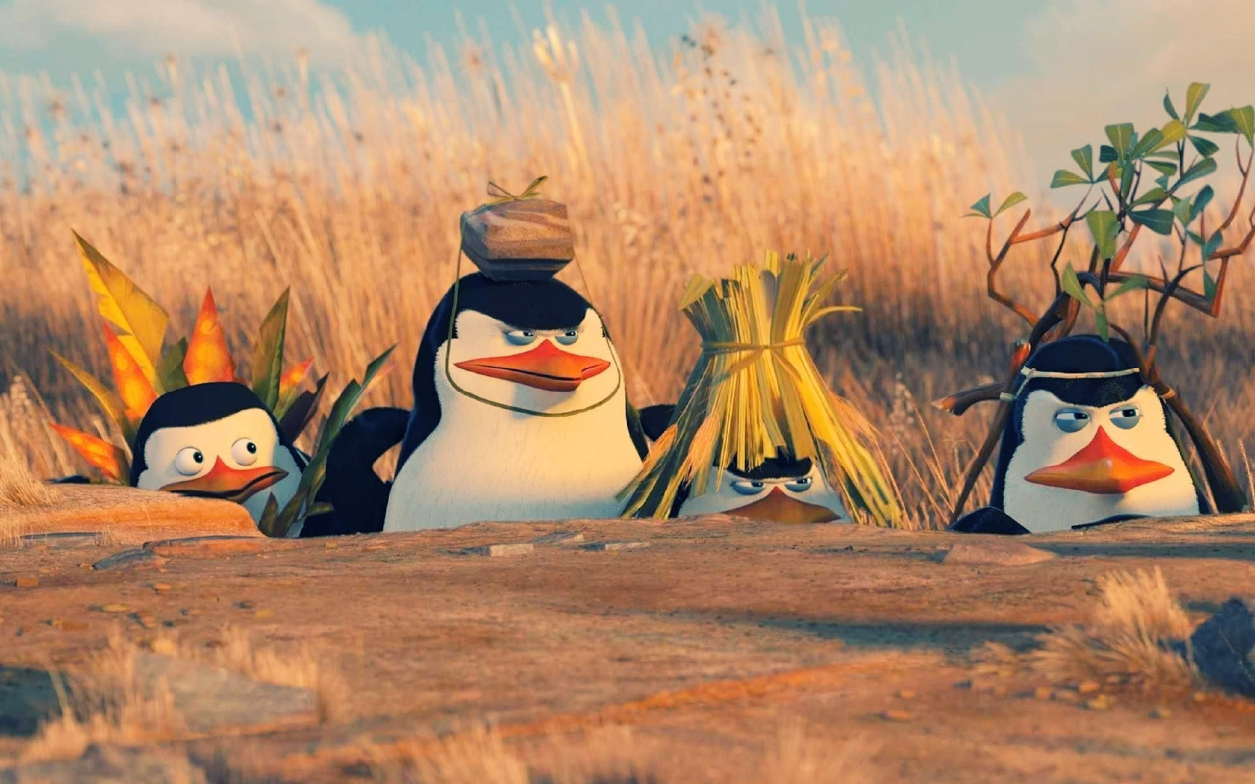 hd wallpaper funny penguins of madagascar | wallpapers trend