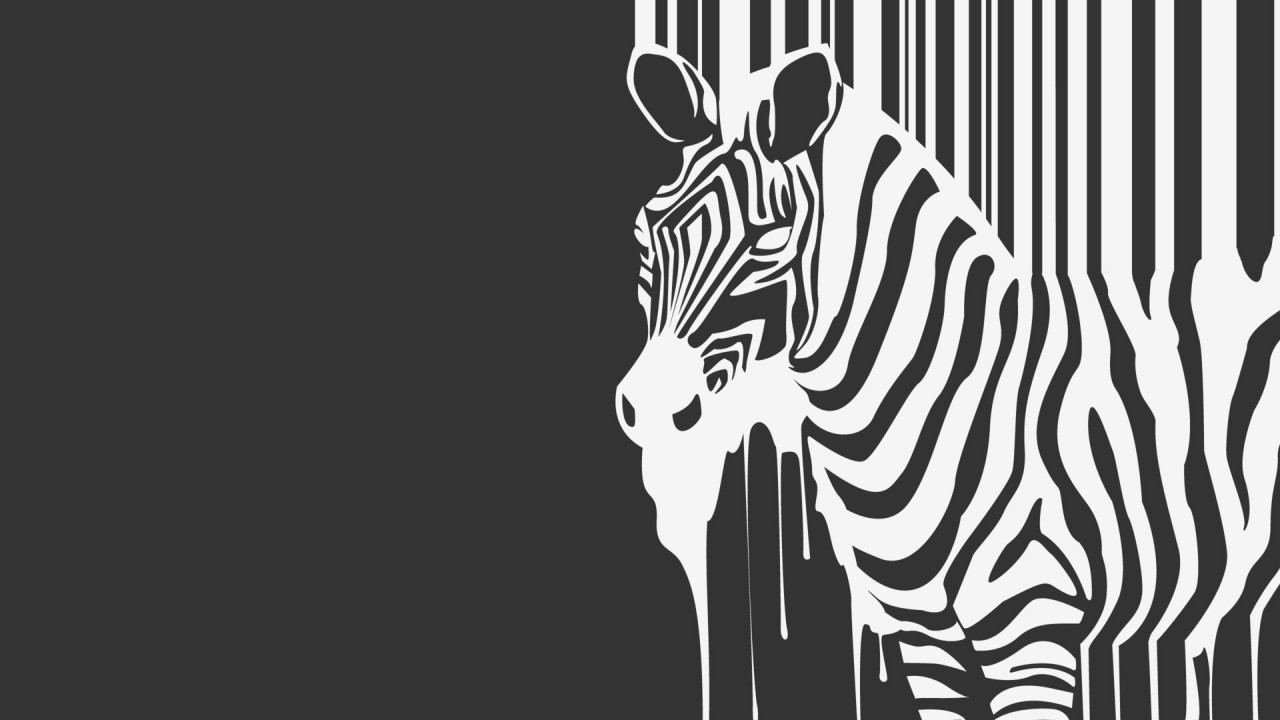melting zebra