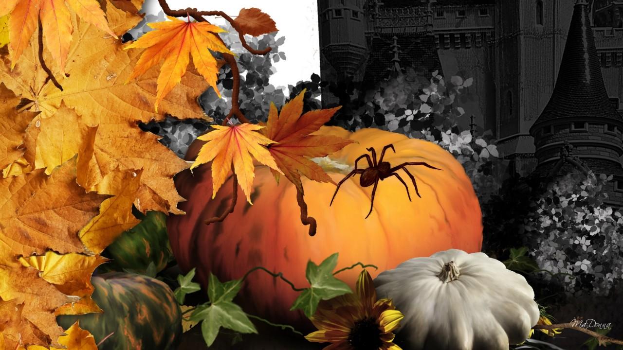 hd wallpaper halloween haunt
