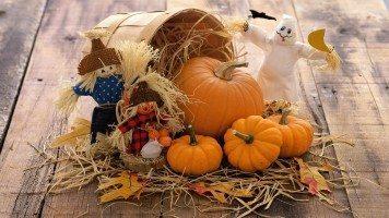 preparing-pumpkin-for-halloween