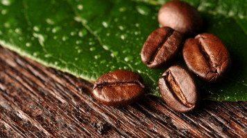 hd-wallpaper-pictures-coffee-corn-macro-lea