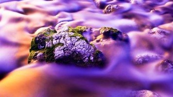 fog-over-mossy-rocks