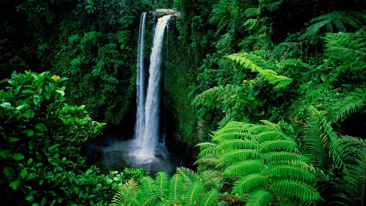 hd wallpaper waterfall in green