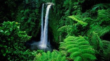 hd-wallpaper-waterfall-in-green