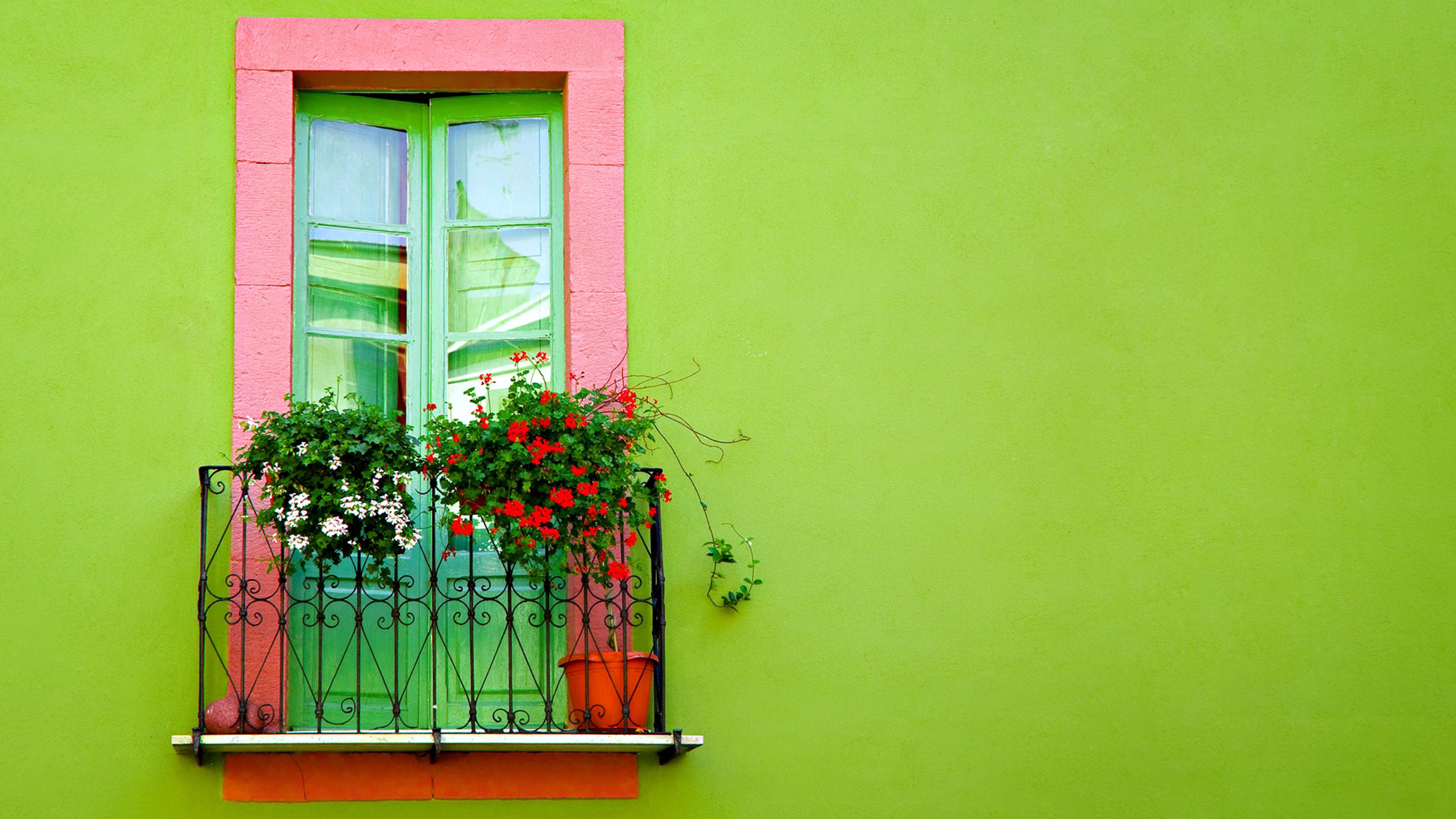 Балкон двери цветы стена салатовая hd обои для ноутбука.