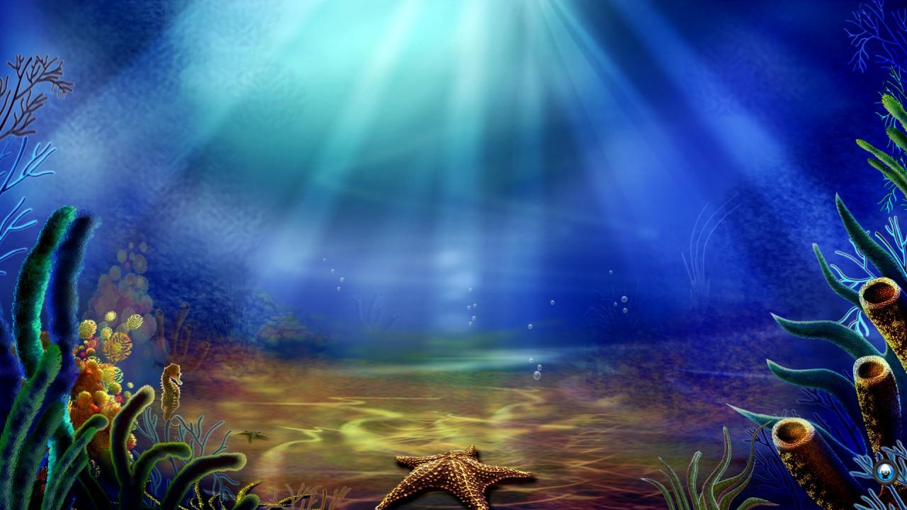 hd wallpaper underwater hd beautiful