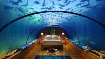 hd-wallpaper-underwater-sleeping