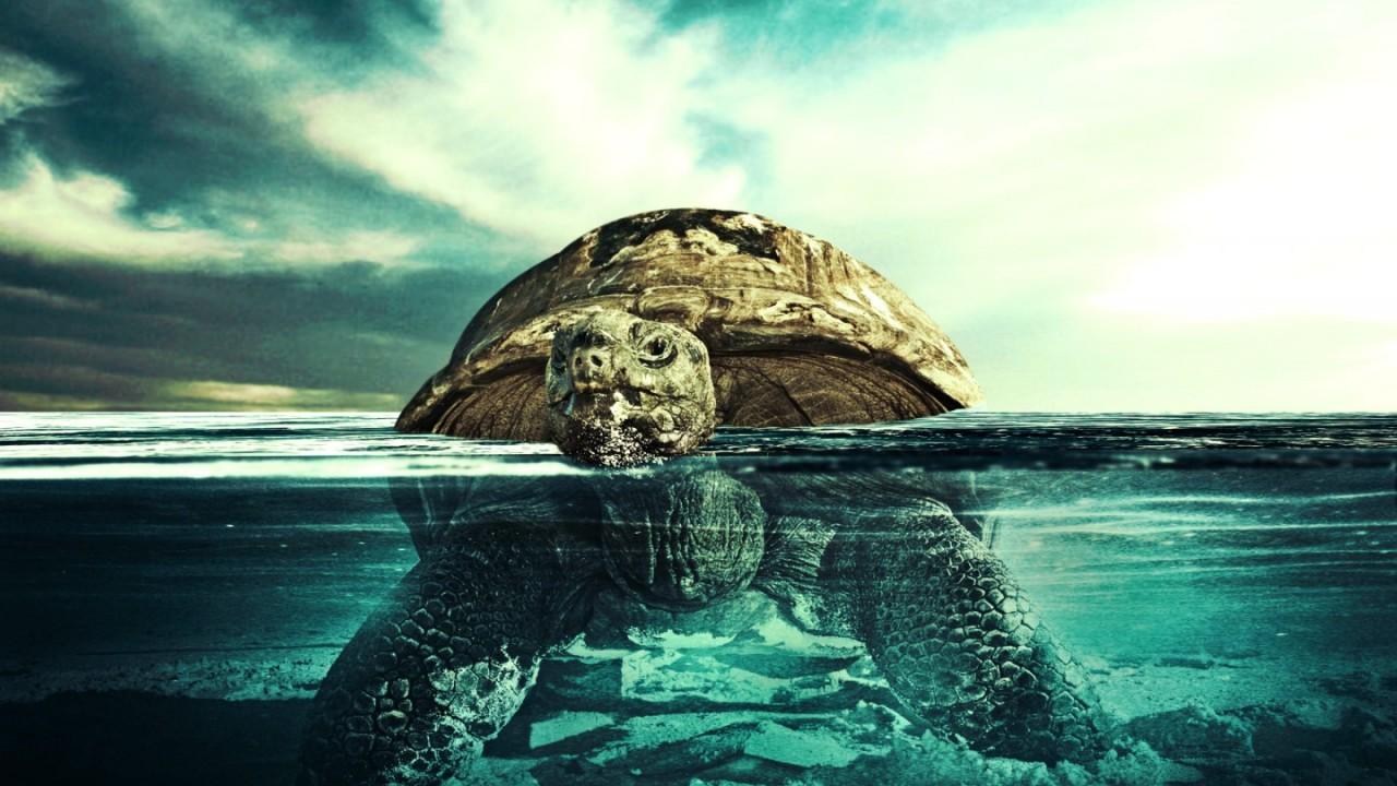 Underwater Ocean Beach Hd Wallpaper Wallpapers Trend