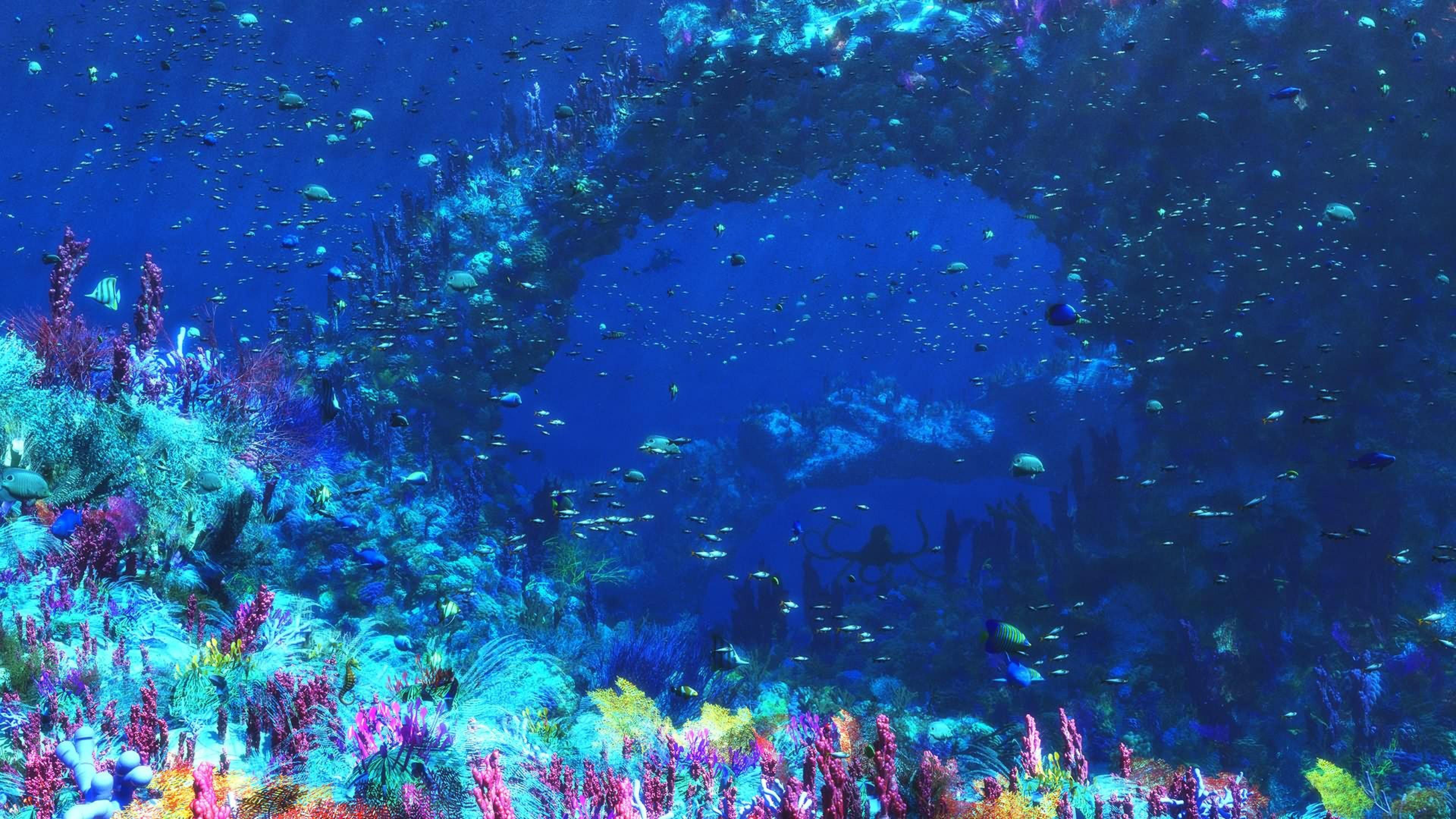 Заставки подводный мир скачать 5