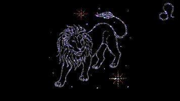hd-wallpaper-lion-zodiac-hd