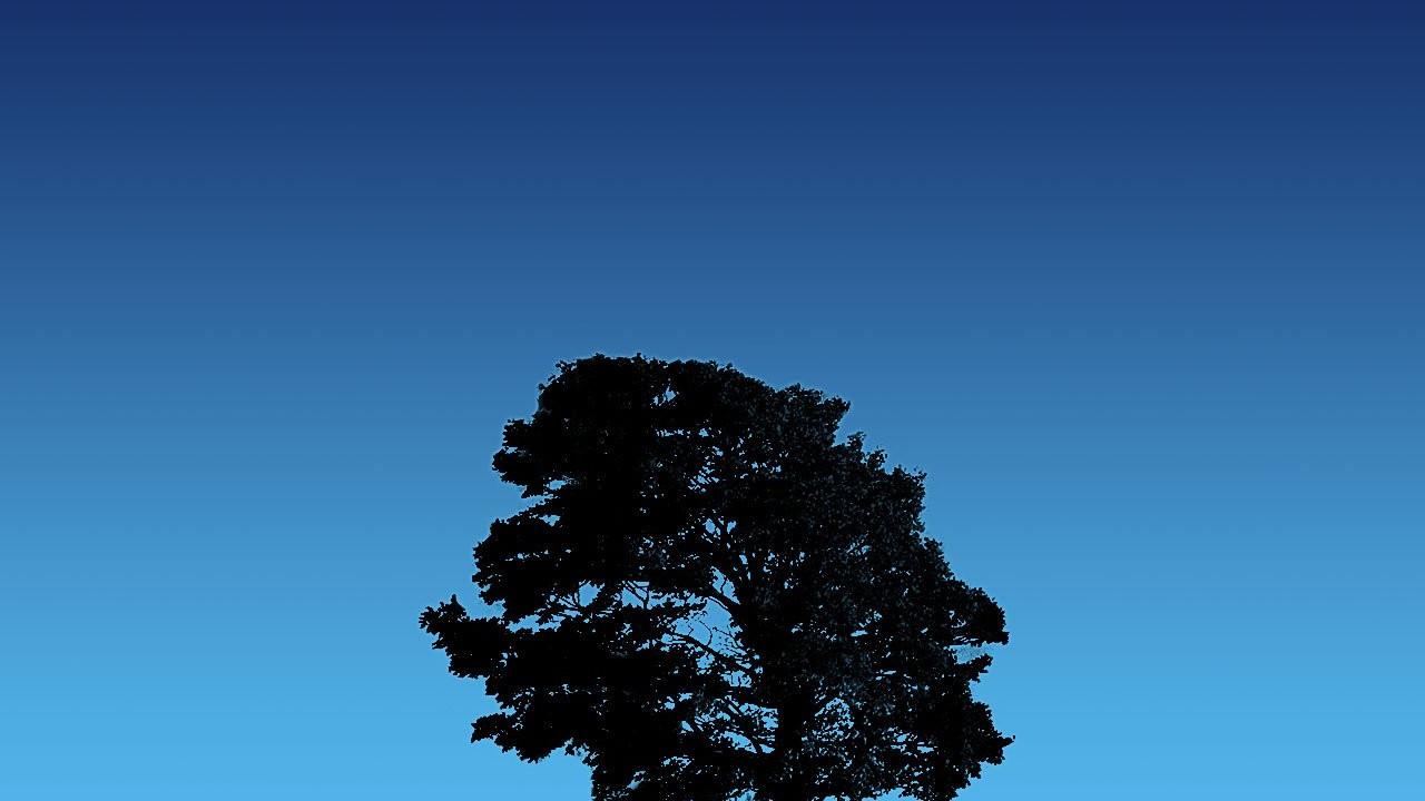 tree on blue sky normal5.4