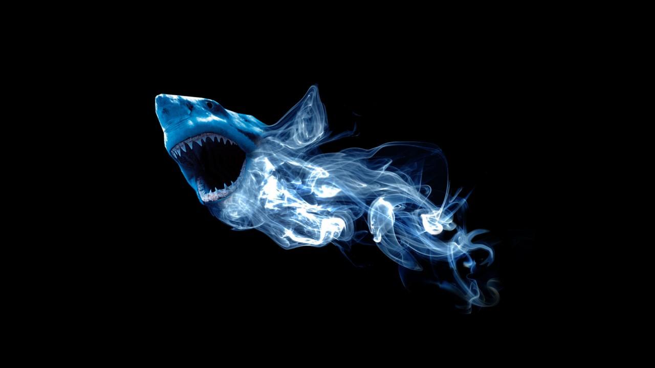 abstract shark
