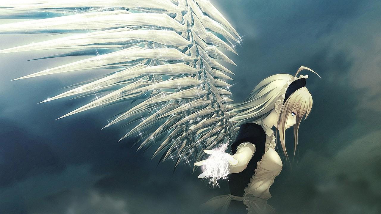 hd wallpaper animal angel