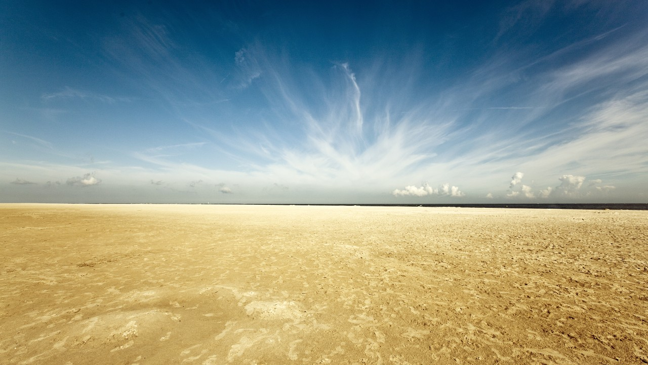 renesse beach wide