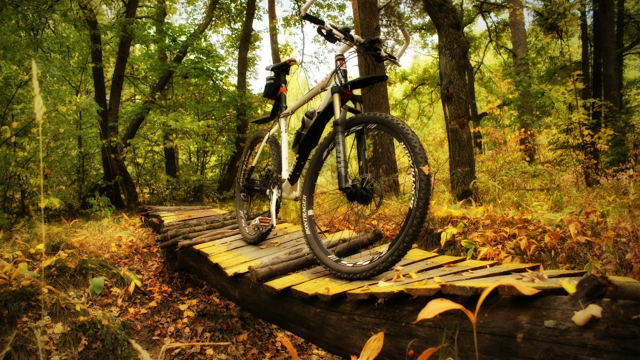 hd wallpaper sport bike forest trek on the pictures