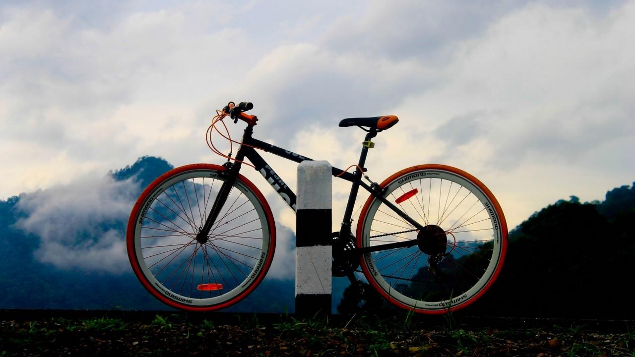 mountain bike to the top