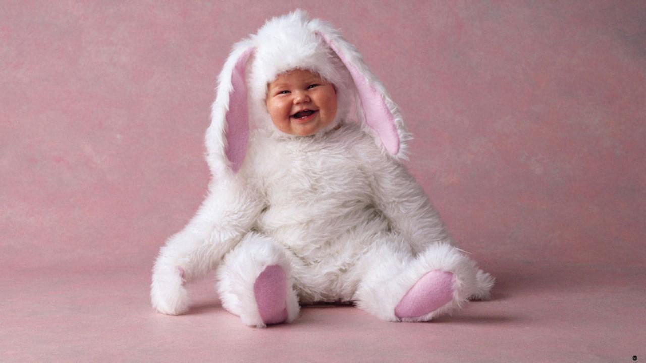 cute rabbit baby hd wallpaper
