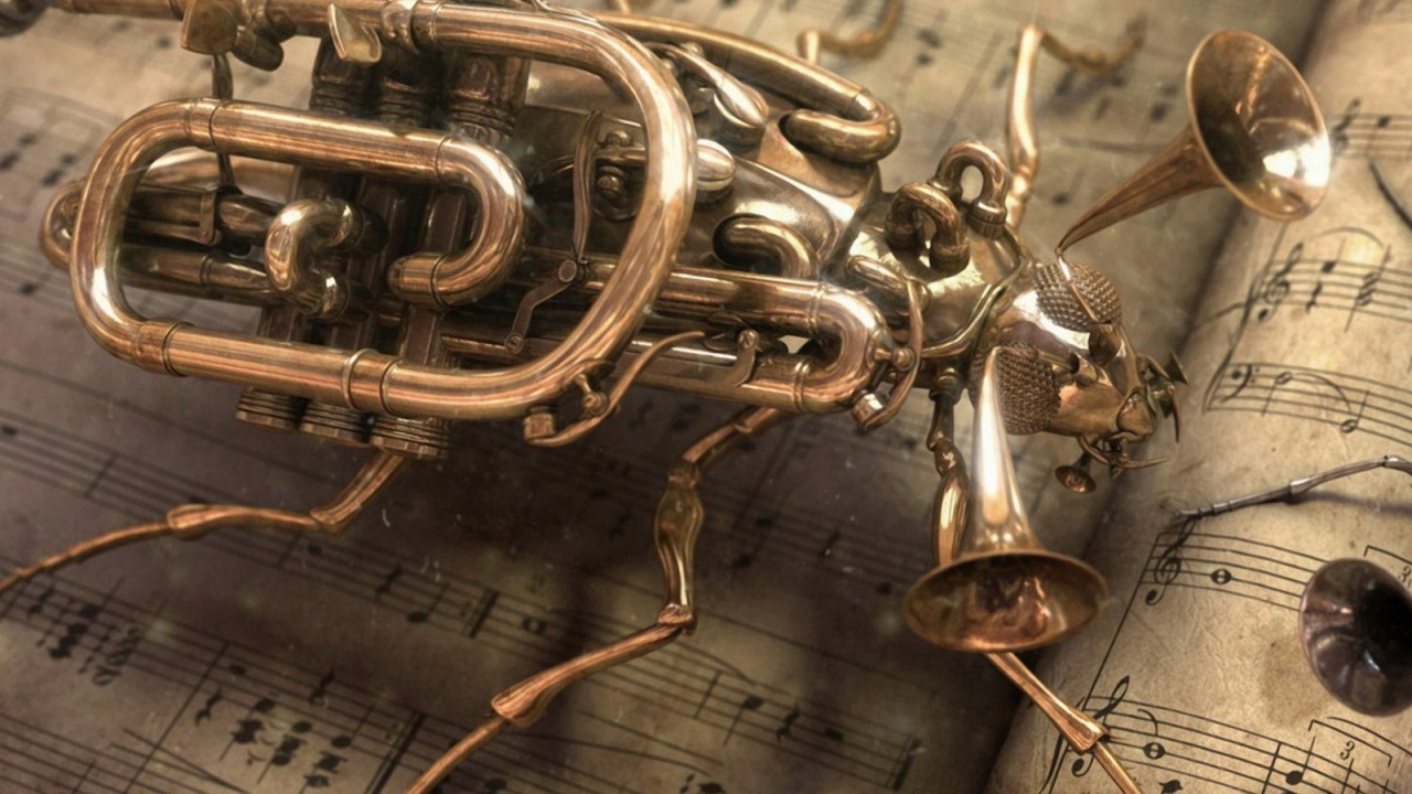 musical instruments insect