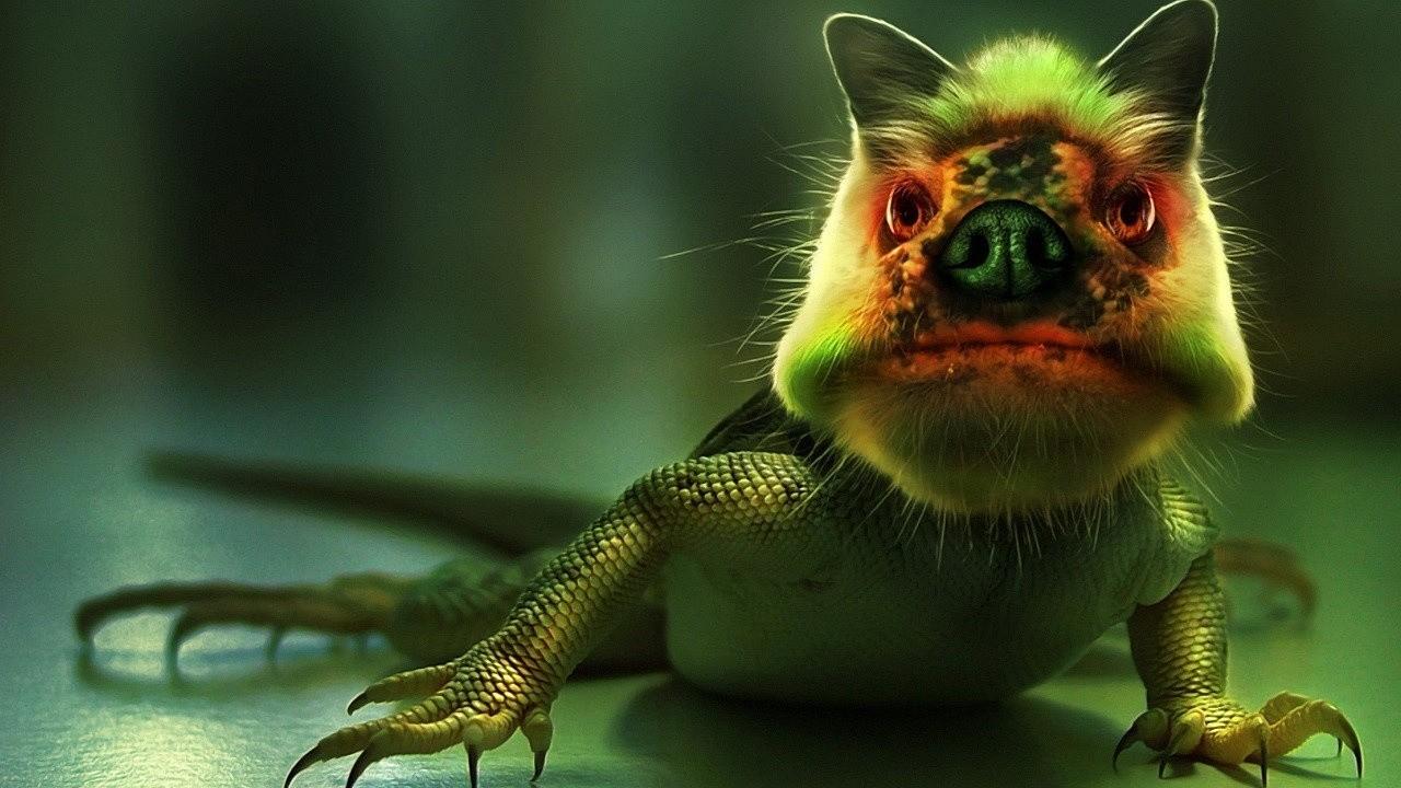 lizardpigus