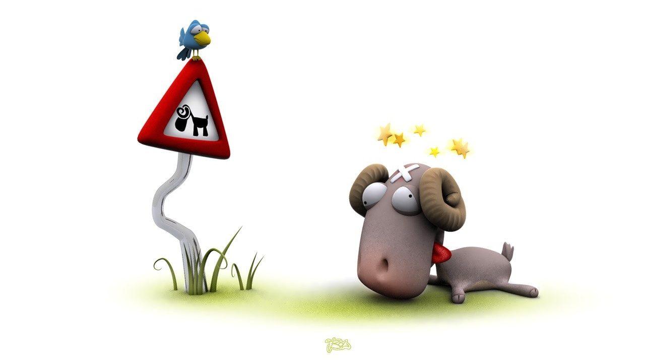 poor sheep