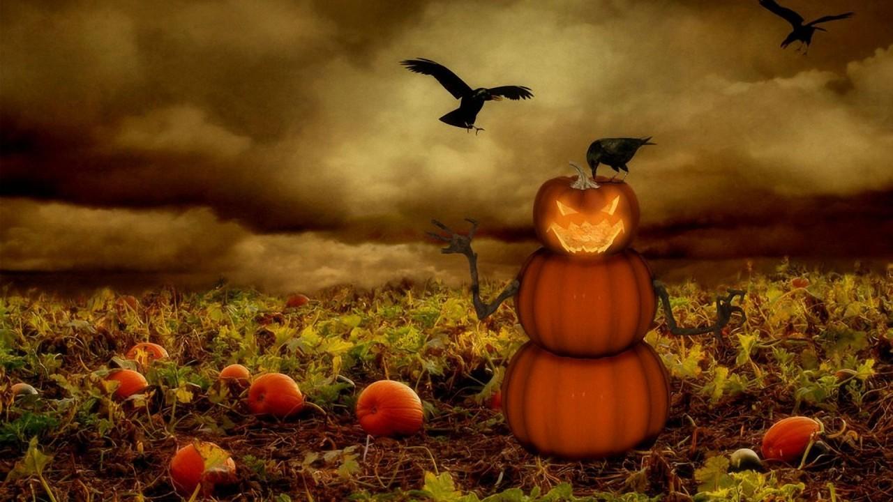 picture halloween hd wallpaper