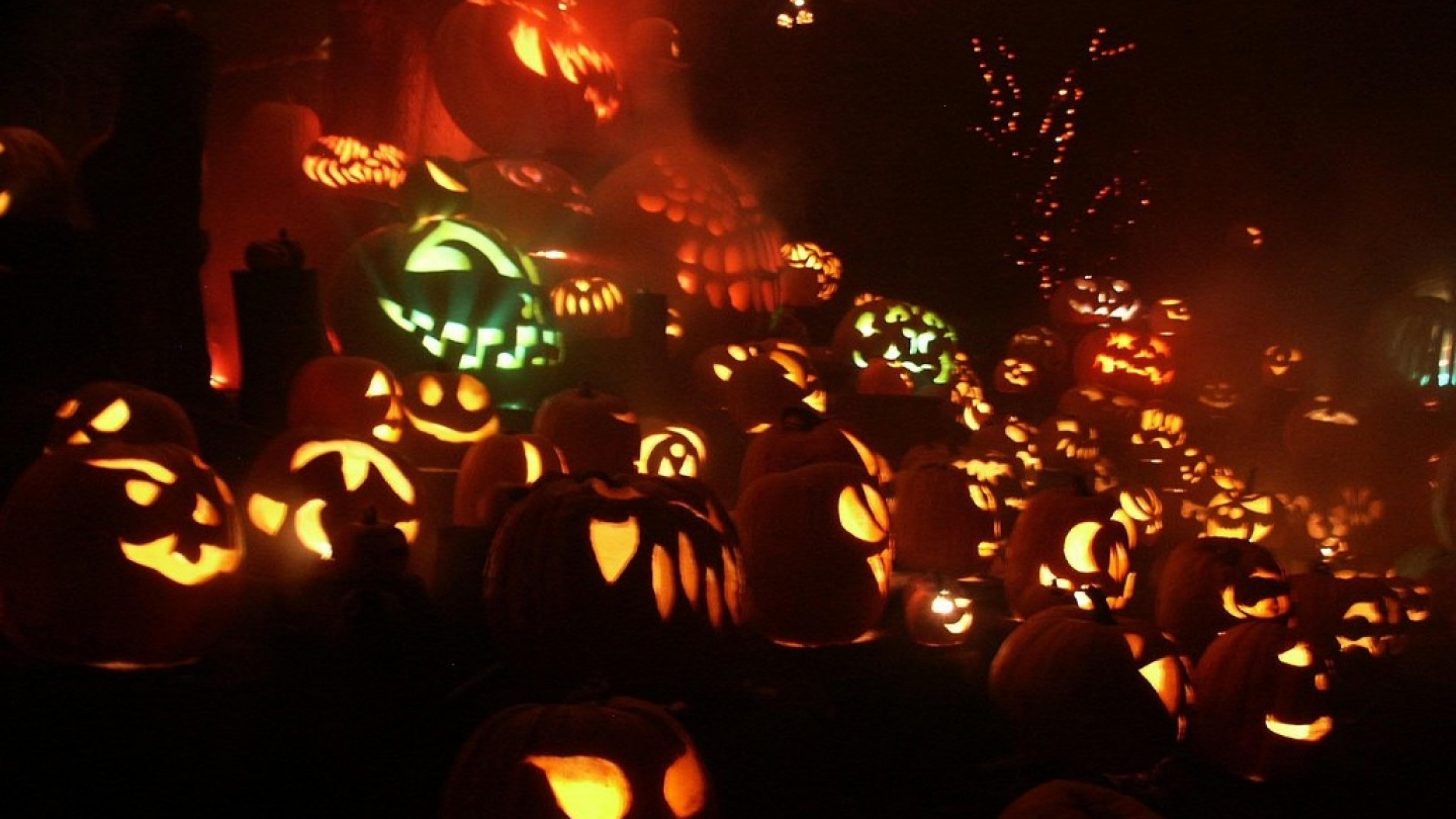 Pumpkins Jack O Lanterns Hd Wallpaper Wallpapers Trend