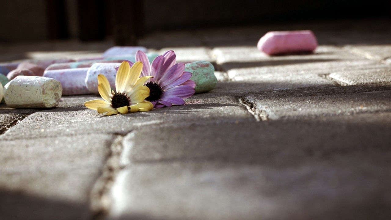 chalk and flowers