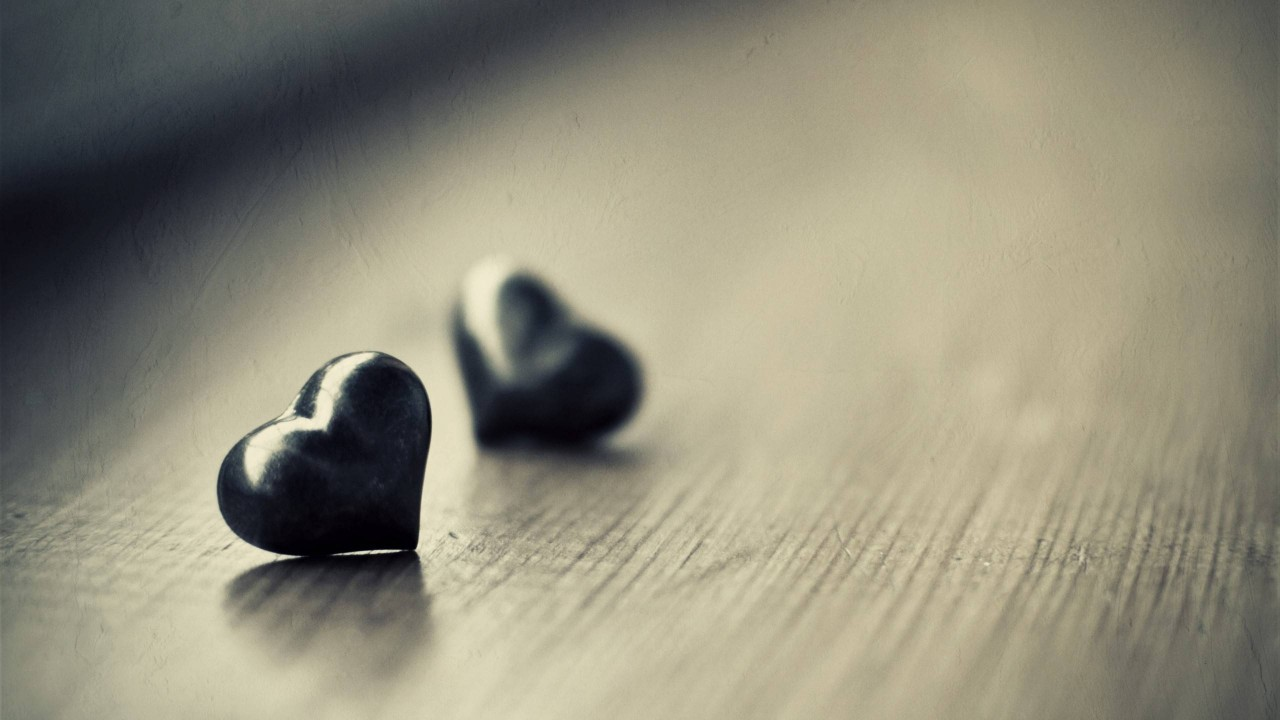 macro hearts hd wallpaper