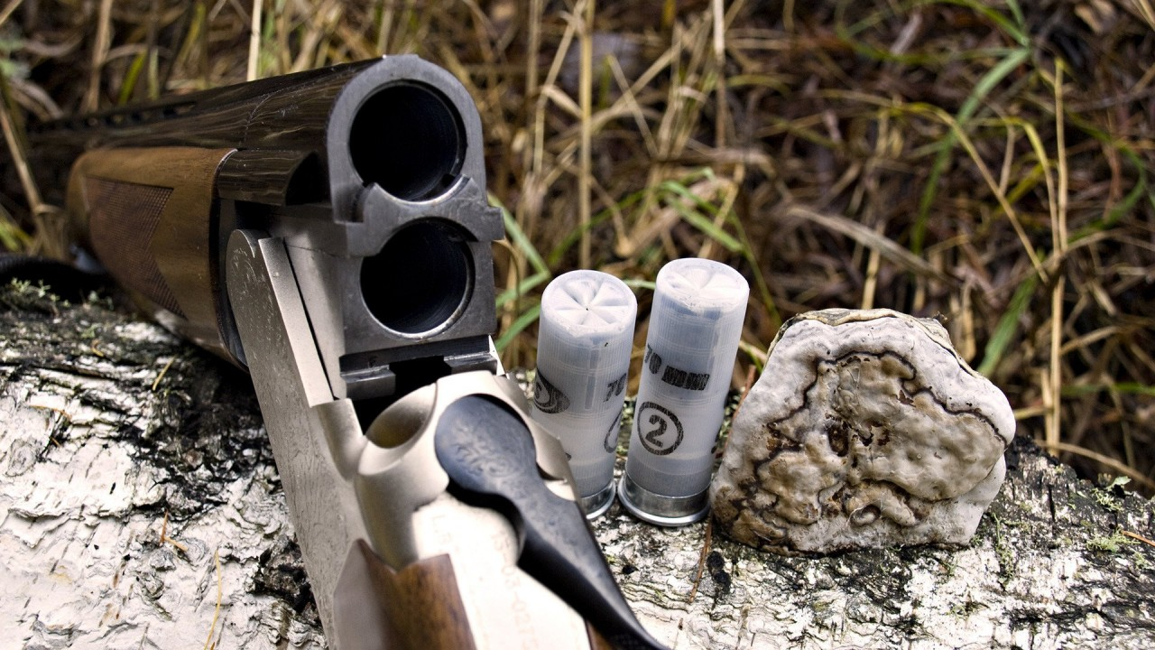 hd wallpaper gun vector and bullets