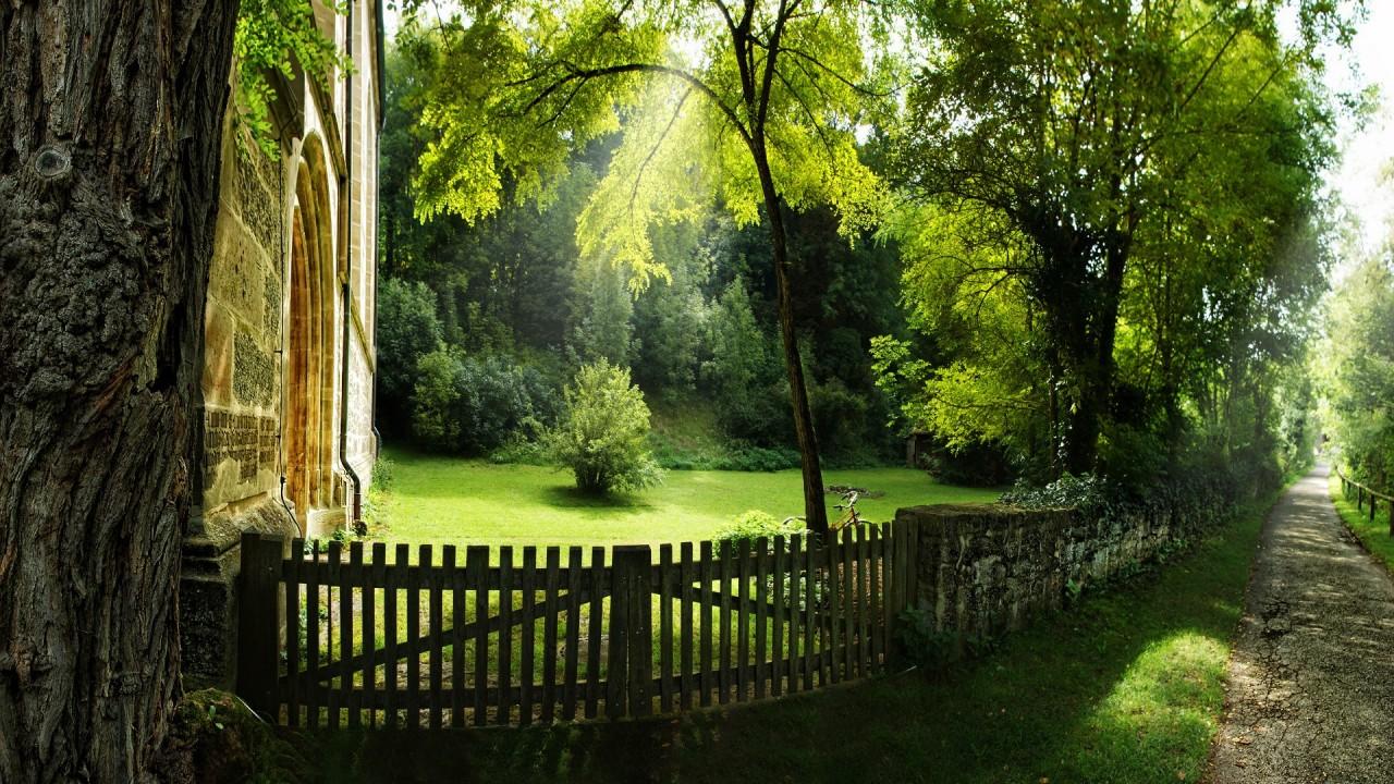 hd wallpaper nature green forest garden