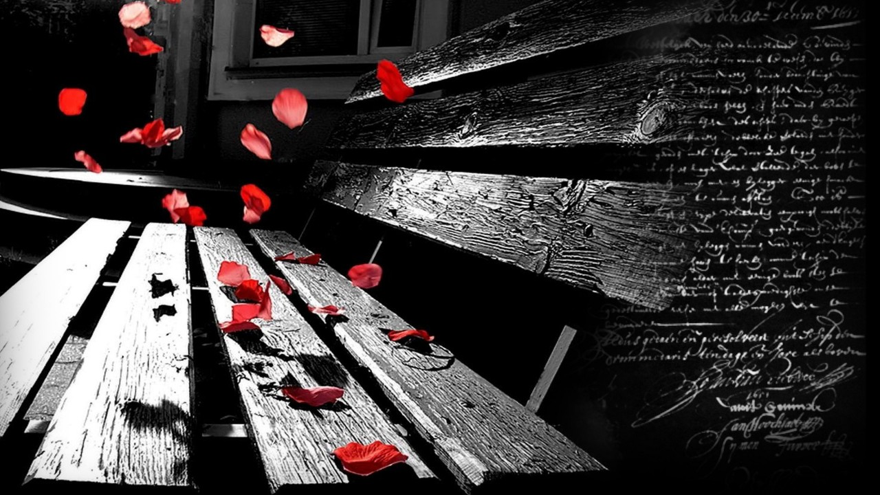 red petals falling on a black bank
