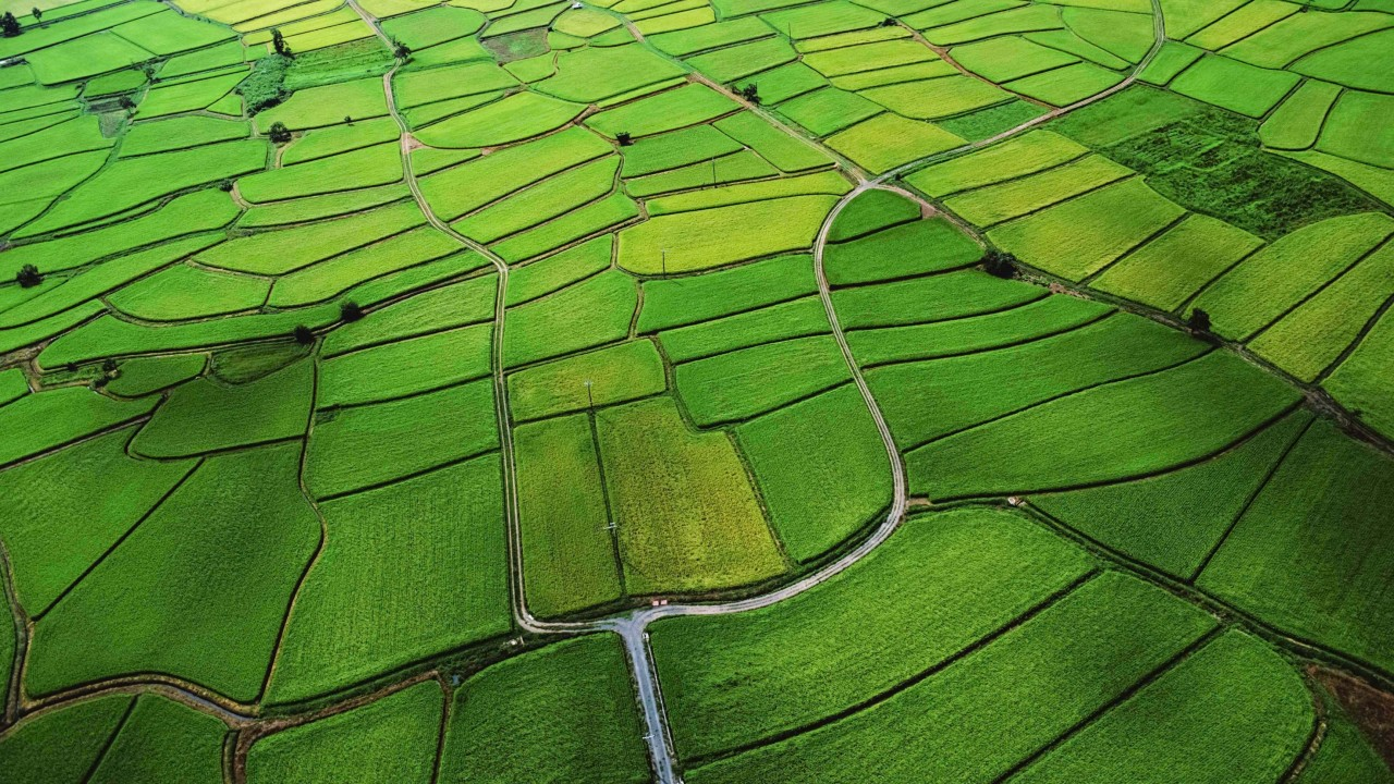 Efficient irrigation system