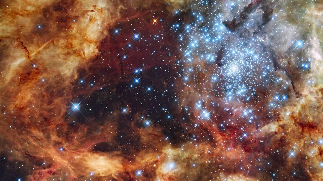 Swarm of stars