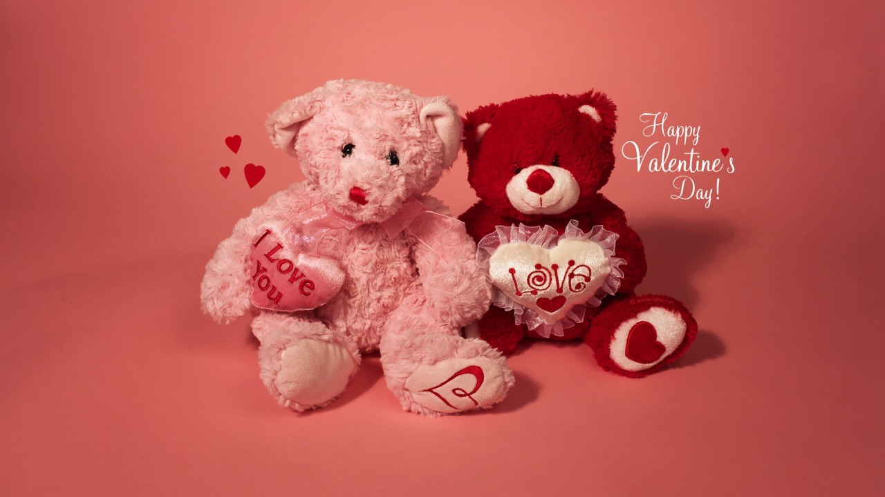 hd wallpaper i live you valentine`s day